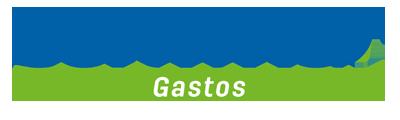 CGASTOS